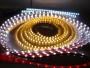Fabricante profesional de iluminación LED de China (LED lámpara, leds)