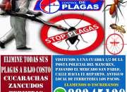 FUMIGACIONES G CONTROL DE PLAGAS