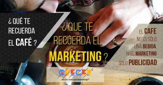 Www.consultor.marketing