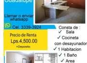 Renta apartamento 1 hab en guadalupe
